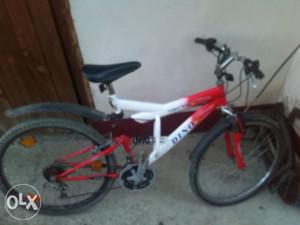biciklo dino