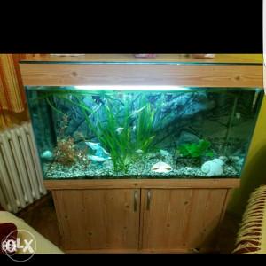 Akvarijum sa komodom i kompletnom opremom