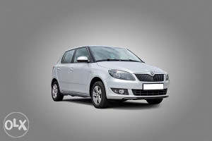 Škoda Fabia 2014 Vec Od 40 KM