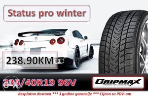 235 40 19 96V GRIPMAX Status pro winter R19
