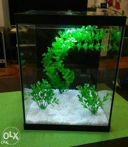 Akvarijum 10l gratis 3 ribice, podloga, biljke,rasvjeta