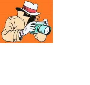 privatni detektiv