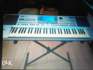 OVCE KORG 50 PA PROFESIONAL