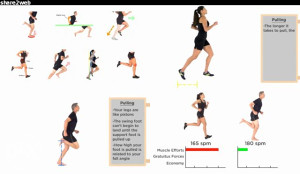 Become a better runner in 12 weeks - DVD