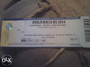 SLOVACKA-BIH 10.9.2013