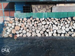 Bukova i grabova drva