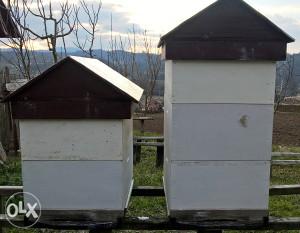 košnice za pčele