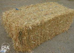 Bale sijena ekstra kvalitete sijeno za krave muzare
