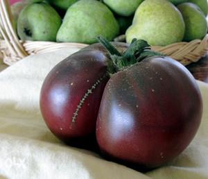 Brandywine Black crni krupni paradajz