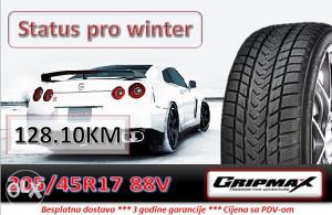 205 45 17 88V GRIPMAX Status pro winter R17