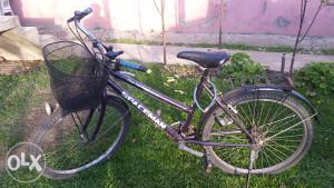 Zenski Bicikl