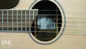 Akusticna gitara (ozvucena)