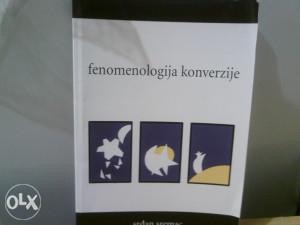Fenomenologija konverzije