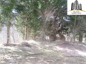Trnovo , zemljište od 16 876 m2 na prodaju!