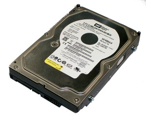 Hard disk WESTERN DIGITAL 160GB