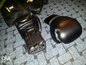 Boksačke rukavice Više modela 062/546-546