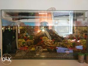 Akvarij sa opremom