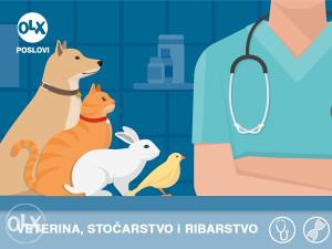 Posao - Veterinar i veterinarski tehničar