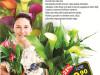 Cvijet Zantedeschia Calla mix